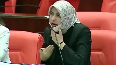 Kadın açıklaması büyük tepki çeken AKP'li Özlem Zengin: Önemli ...